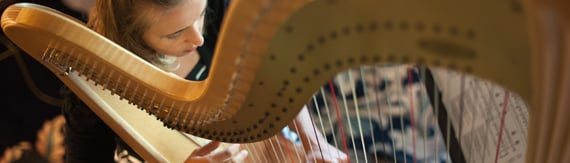 wedding-harpist-minneapolis.jpg