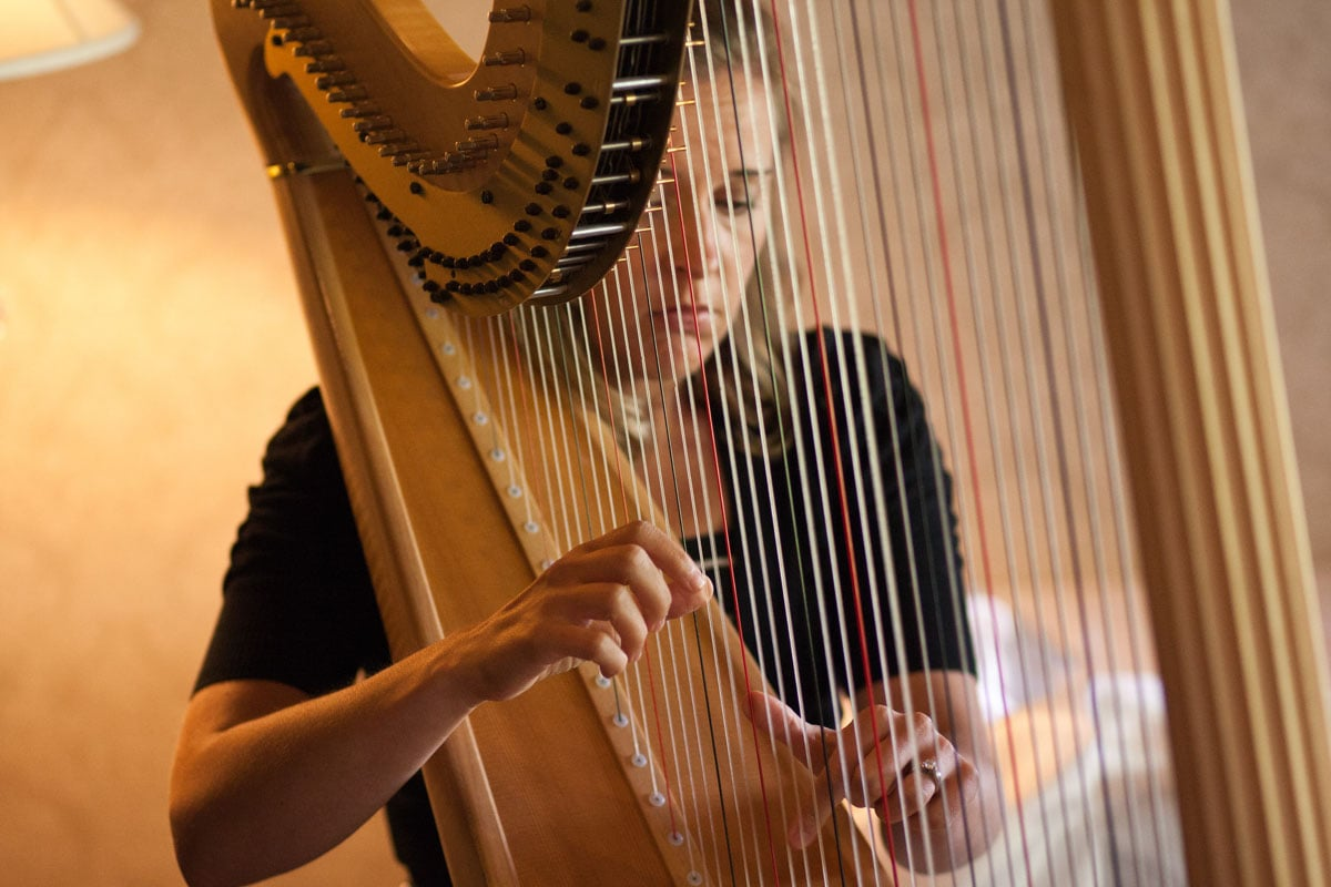 wedding-harpist-roee-allisonnick-0535.jpg
